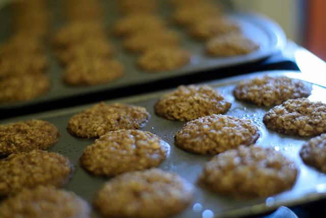 The fully cooked morning oatmeal muffin bites.