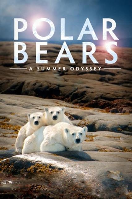 Polar Bears: A Summer Odyssey (2012) ταινιες online seires xrysoi greek subs