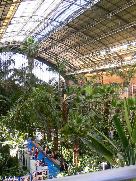 Jardin botanico de Atocha. Ruta lowcost por Madrid