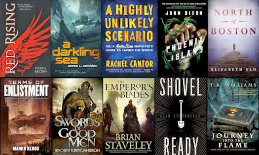 2014 Debut Author Challenge Cover Wars - January 2014 Winner