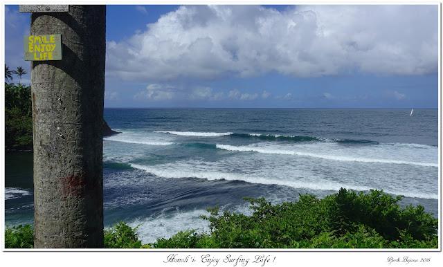 Honoli'i:  Enjoy Surfing Life!