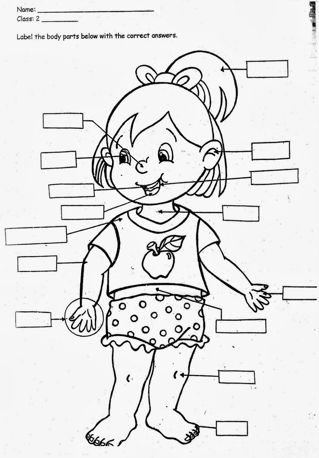 all about me by colouring