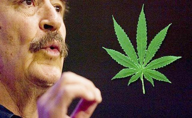 Plantas, marihuana, ventas,