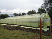 Greenhouse prices, cost of greenhouse polythene in Kenya. Cost of greenhouse kit in  Kenya.Cost of drip irrigation in Kenya, cost of Dam liners in Kenya. Metallic greenhouse prices in Kenya, Wooden greenhouse prices in Kenya.