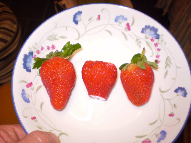 Three Strawberries in a bowl