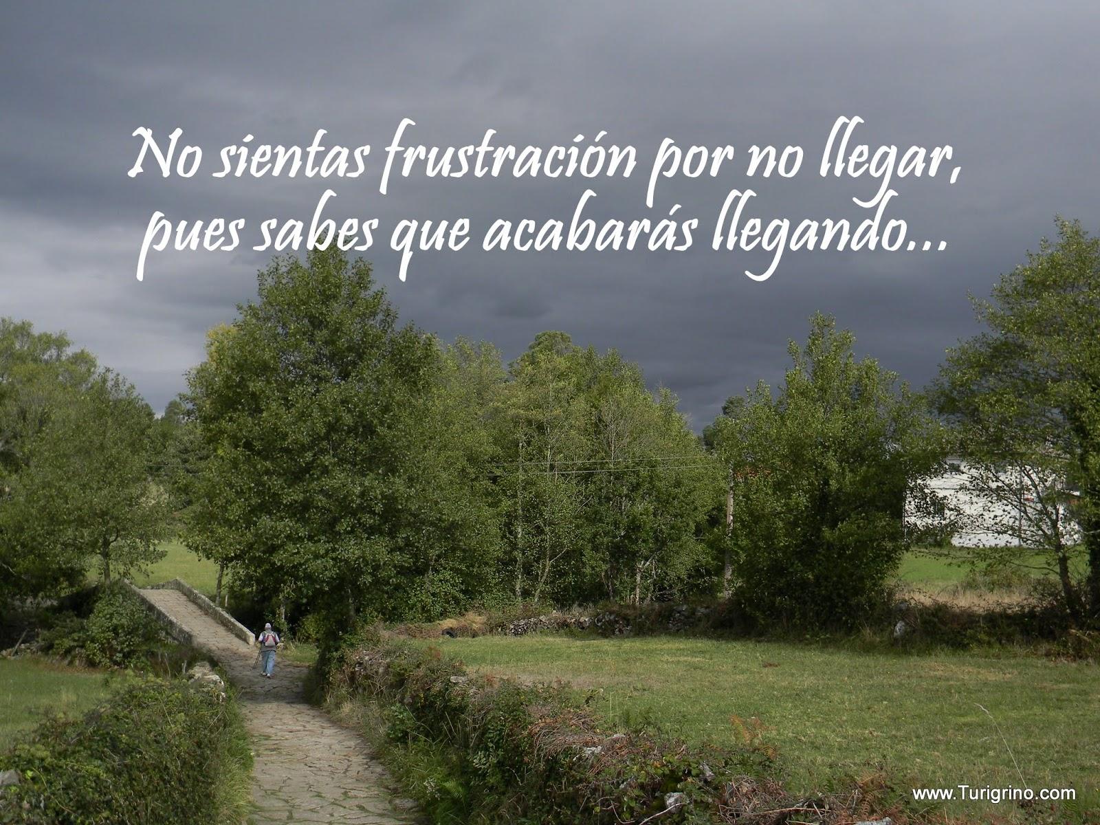 Camino De Santiago Organizado Vip Frases Sobre El Camino
