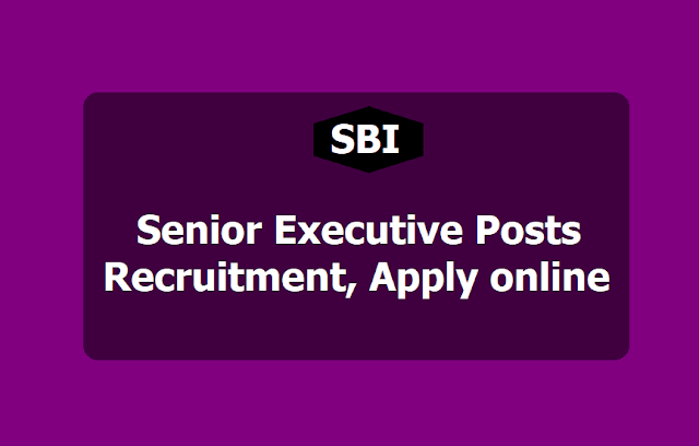 SBI Senior Executive Posts