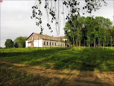 Туча. Руины дома усадьбы Еленских