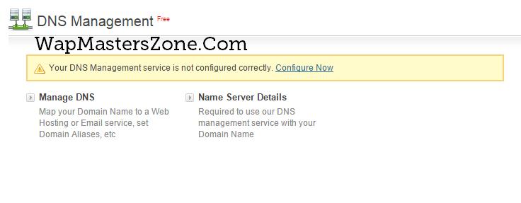 wapka site dns manage custom bigrock domain