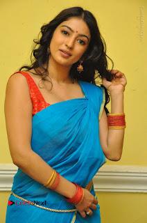 Telugu Actress Vaibhavi Stills in Blue Saree at Www.Meena Bazaar Movie Opening  0047.JPG