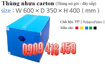 Thùng nhựa kiểu thùng carton