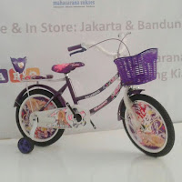 16 erminio sepeda anak perempuan ctb
