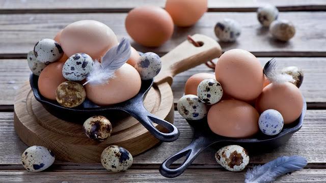Telur Puyuh vs Telur Ayam