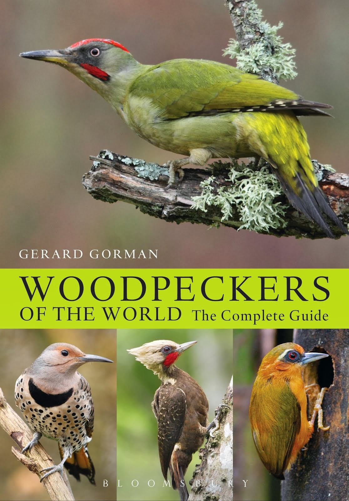 Woodpeckers of the World - The Complete Guide