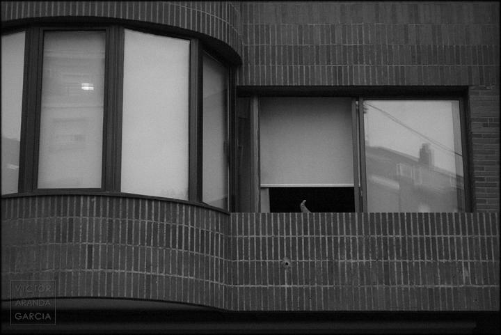 pie,foto,ventana,limites,valencia