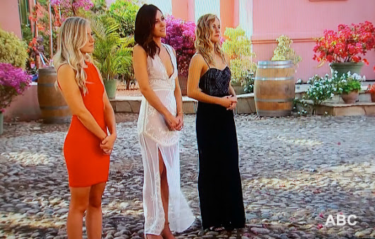 One Proposal NOT Happening on THE BACHELOR Season 22 Overnight Dates Recap