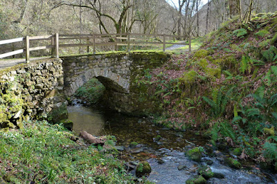 Puente en el Área Recreativa del Chorrón - Piloña - Asturias