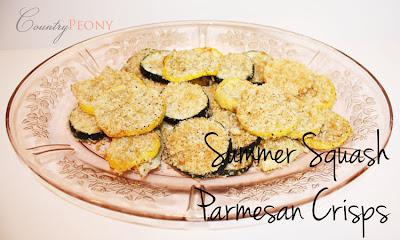 Summer Squash Parmesan Crisps