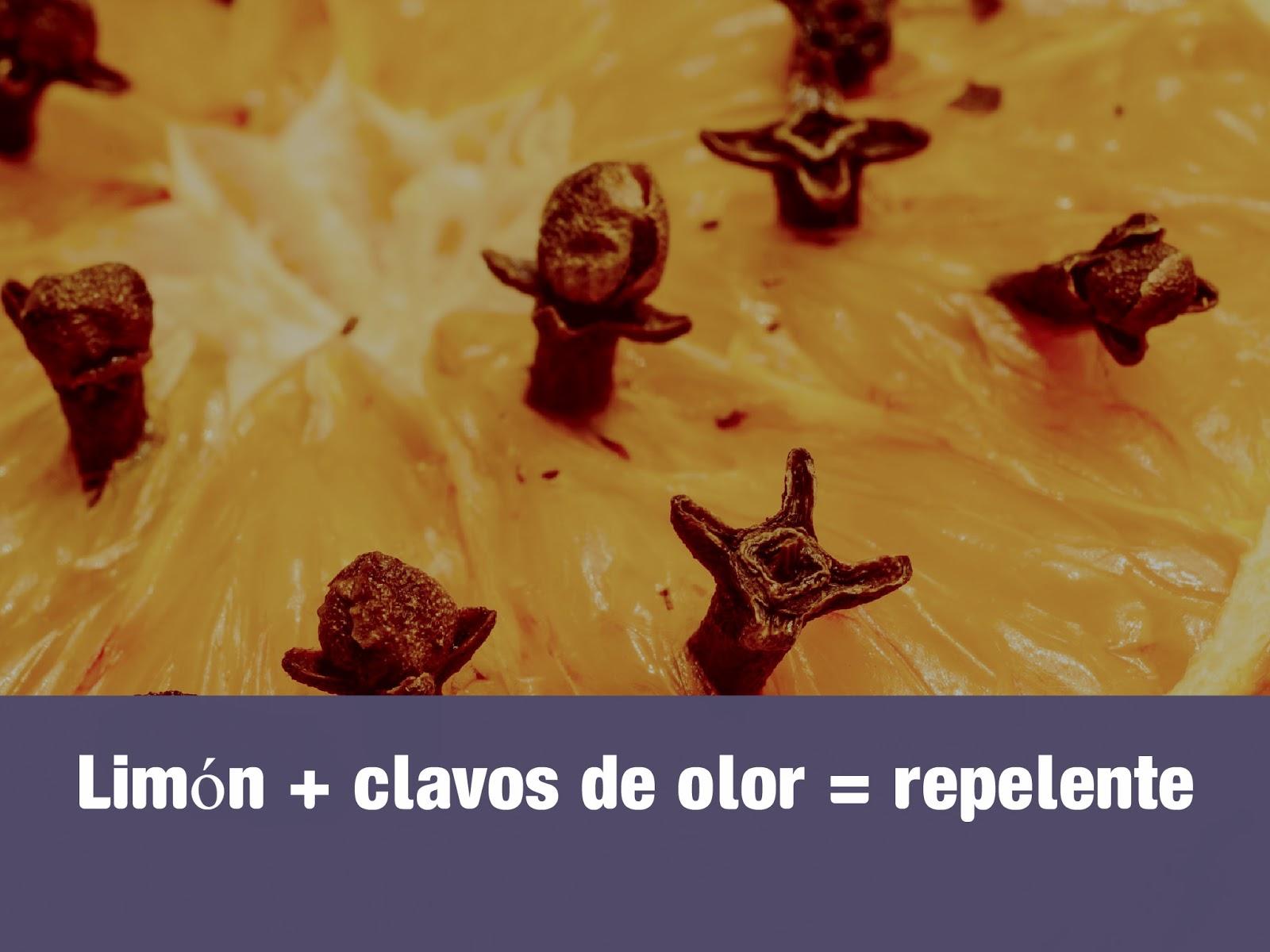 limon-clavos-de-olor-repelente