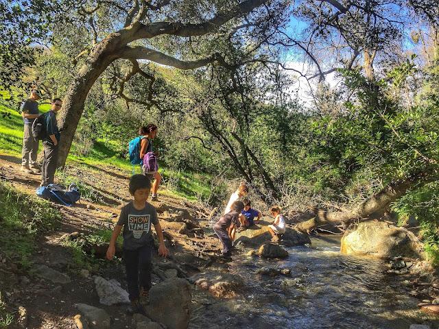 Mt. Diablo Falls Trail Loop creek play
