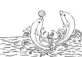 Adorable Dolphin Coloring Sheet Animals For Kids