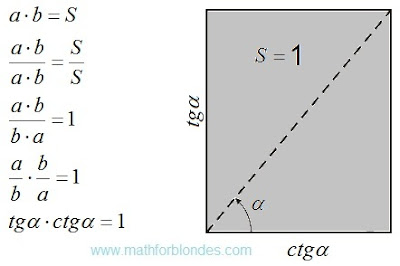 First option of the unit area. Mathematics For Blondes.