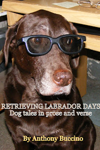 Retrieving Labrador Days
