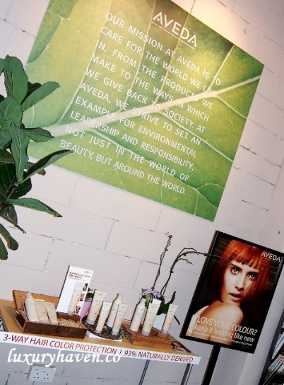 hair story aveda products