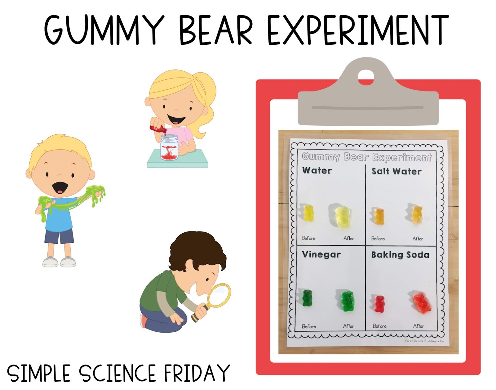 Gummy Bear Science Experiment Worksheet
