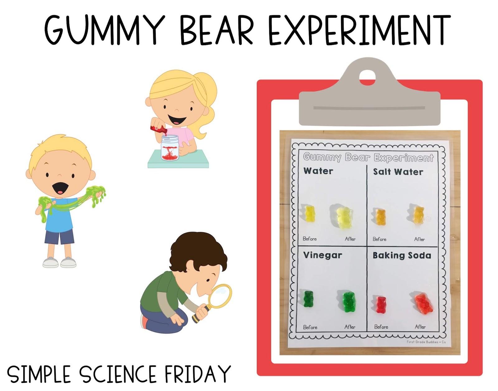 Gummy Bear Science Experiment Worksheet