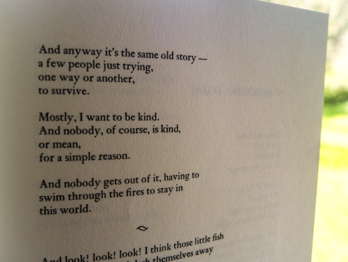 Page with Mary Oliver poem Dogfish