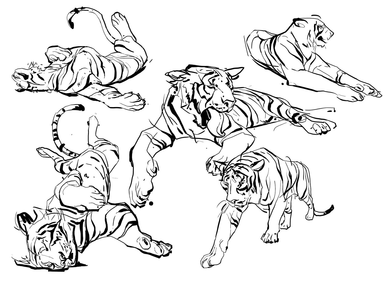 Animal Blog Sleepy Tigers