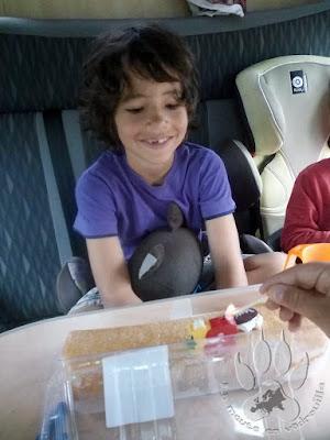 Suede-Moyen-Loup-8-ans-anniversaire