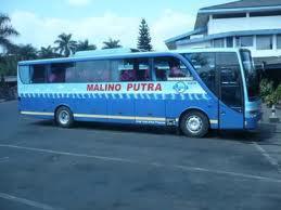 Cara  mengetahui harga dan tarif bus pariwisata Po Bus Malino Putra Kencana terbaru terkini