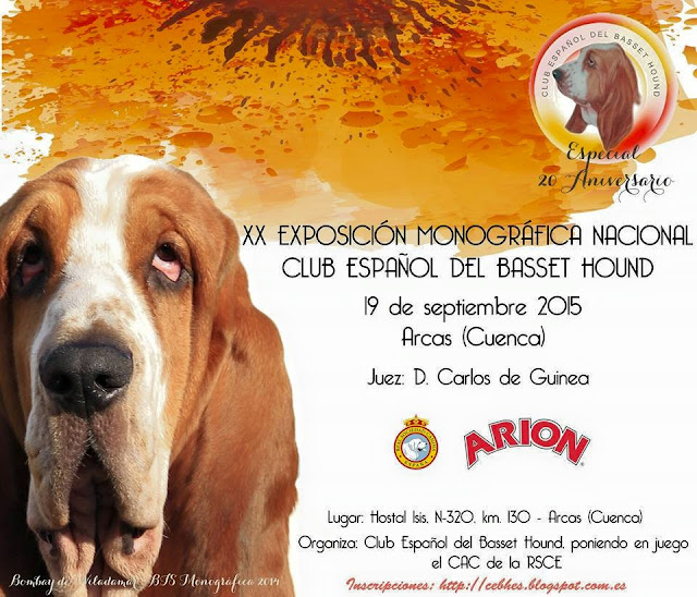 XX Monográfica Nacional Club Español del Basset Hound 1