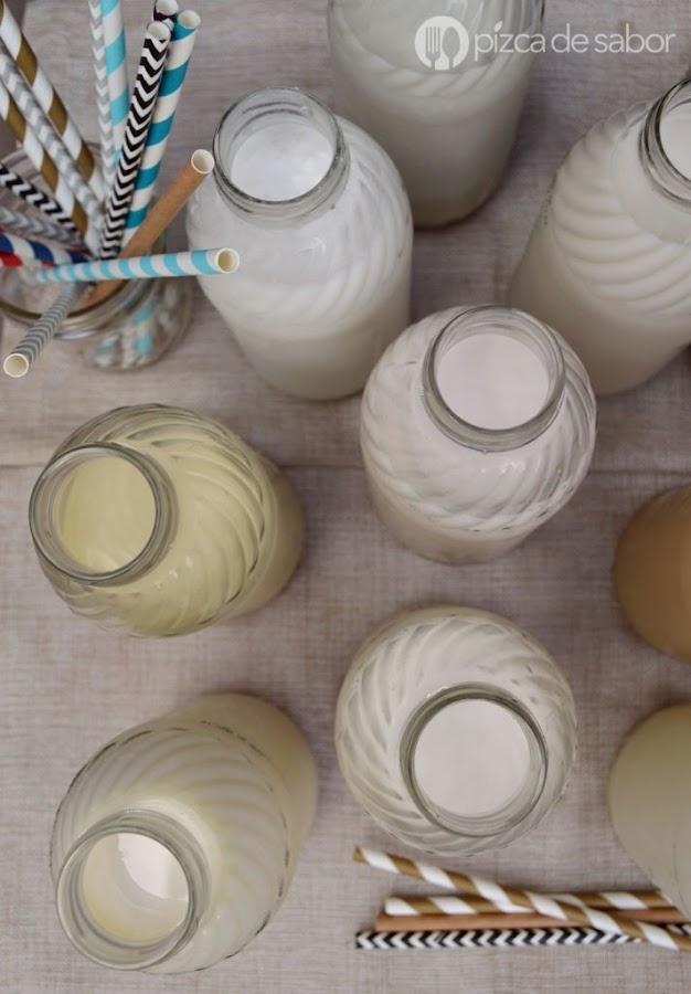¿Cómo hacer leche vegetal?