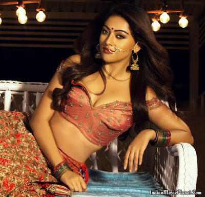 anu emmanuel hot navel cleavage photo shoot south diva