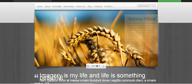 Deepfocus-Premium Wordpress Theme for Photography