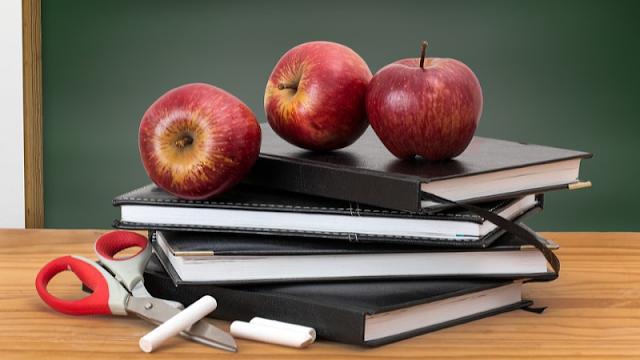 Cursos online gratuitos extensão professores