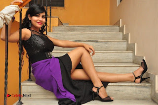 Telugu Actress Rachana Smith Stills at Money is Honey Audio Release  0118.jpg