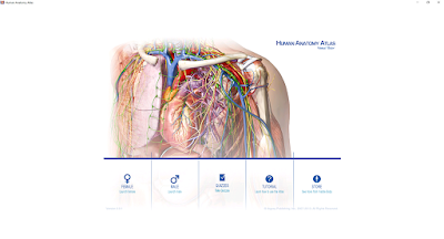 Download 3D Human Anatomy Atlas: Visible Body