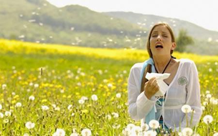 Remedios naturales y ecológicos para aliviar los síntomas de tu alergia