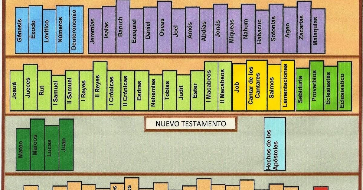 Los 66 libros de la biblia ne42 advancedmassagebysara well known libros de la biblia antiguo y nuevo testamento club de gz11 urtaz Images