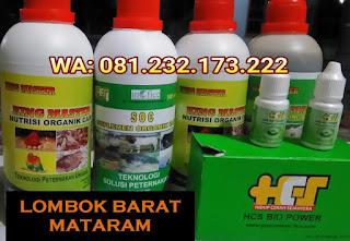 Jual SOC HCS, KINGMASTER, BIOPOWER Siap Kirim Lombok Barat Mataram