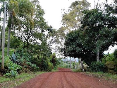 Na hora de ir embora, optamos por descer pelo caminho até Águas da Prata, já no Estado de São Paulo, para evitar cruzar o riacho sem ponte novamente. Era um percurso mais longo: 17 quilômetros de terra contra 11 do percurso de ida. Mas o visual da zona rural enchia os olhos. Parecíamos transitar por um grande jardim.