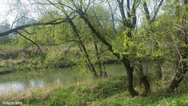 rzeka, Małopolska, Skawina, Skawinka, Błonia