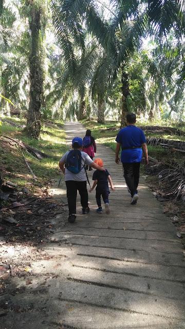 bukit bm, panjat bukit tokun, panjat bukit bm, kali pertama panjat bukit bm, lokasi bukit tokun, maps ke tokun hill, cherok tokun, cherok tokun hillm cherok tokun nature park, nature park, Bukit Mertajam Recreational Forest, taman rimba cherok tokun,