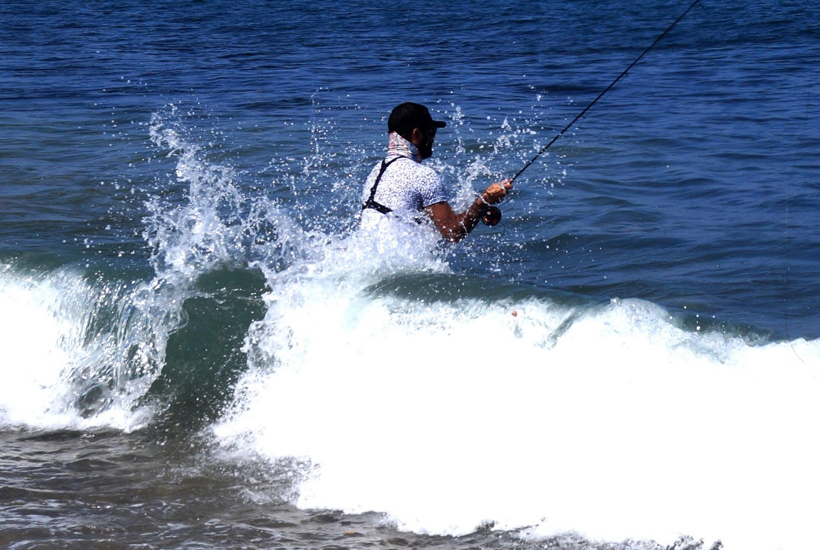 Ebi fisher saltwater fly fishing puerto vallarta mexico for Saltwater fly fishing