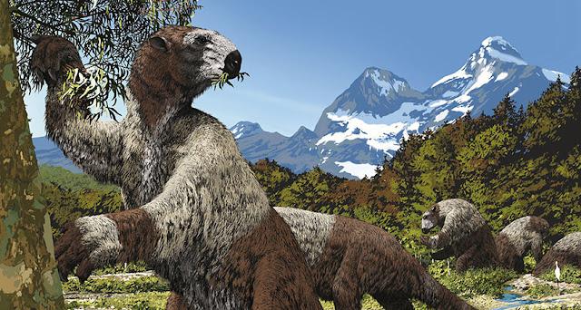 Con người từng săn lùng những con lười khổng lồ trong thời kỷ băng hà
