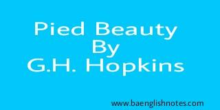 pied beauty analysis essay